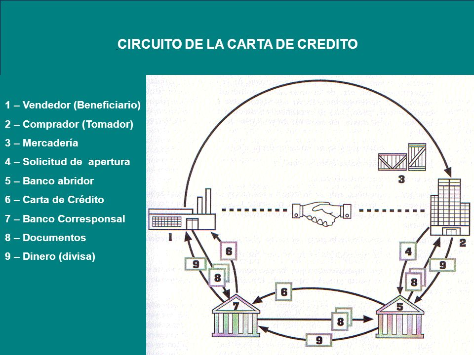 CIRCUITO DE LA CARTA DE CREDITO