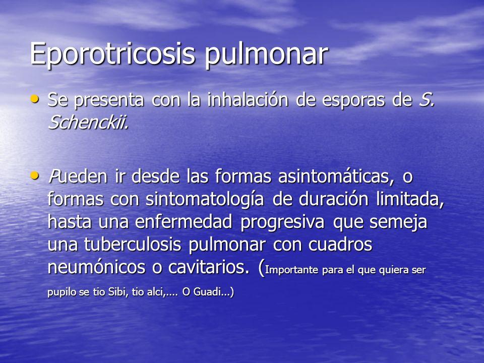 Eporotricosis pulmonar