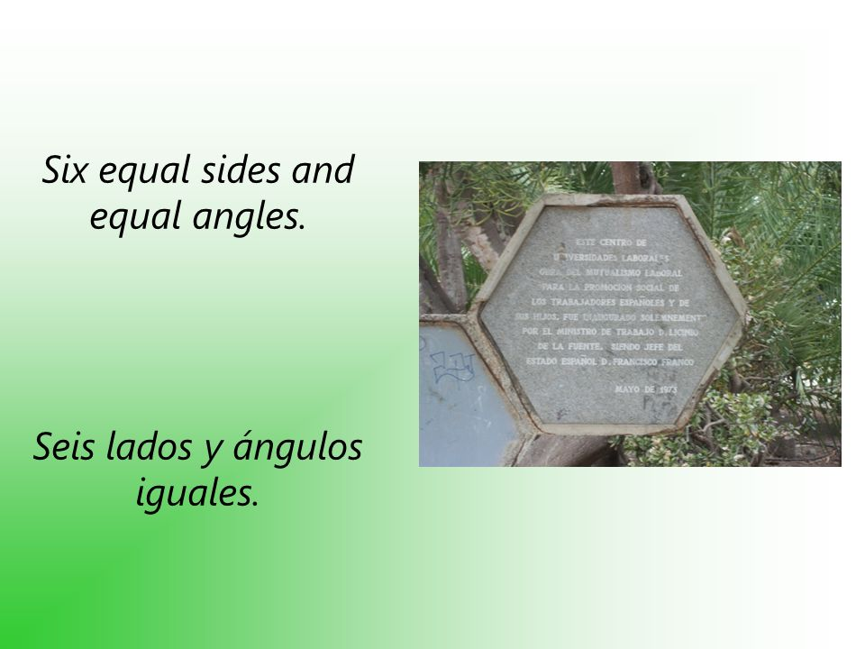 Six equal sides and equal angles.