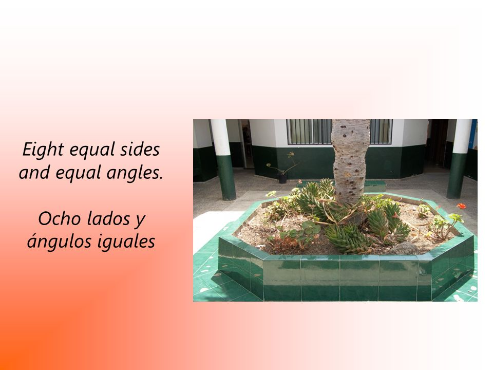 Eight equal sides and equal angles.
