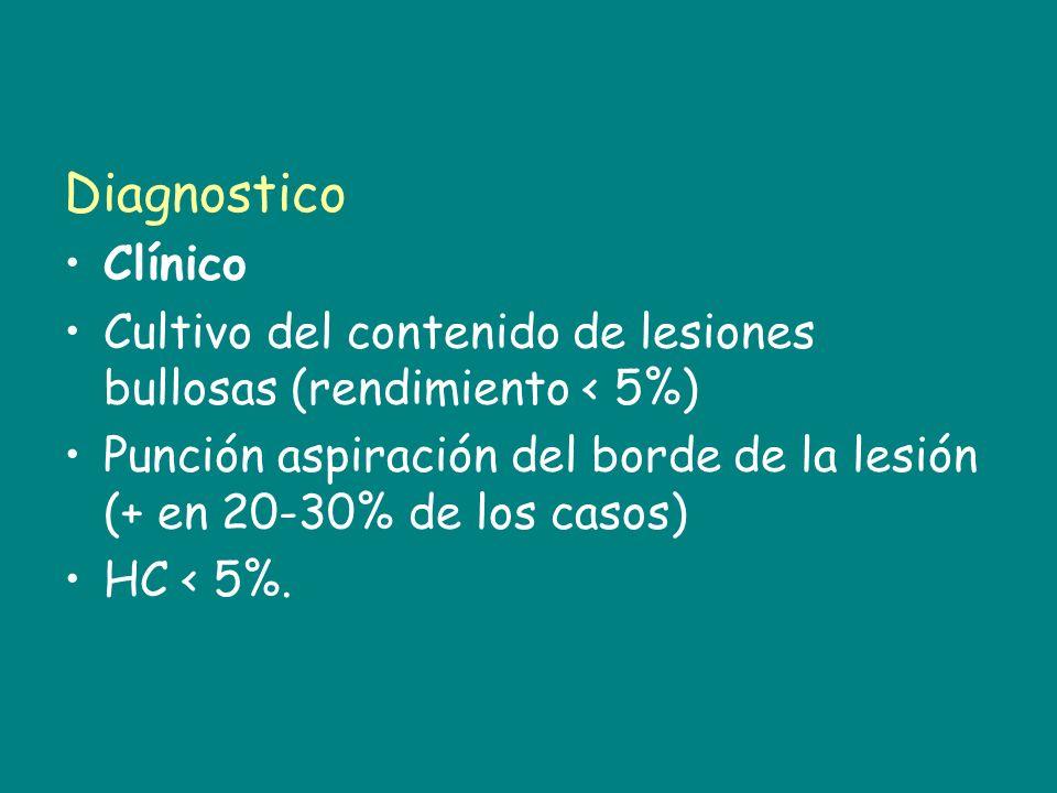 Diagnostico Clínico. Cultivo del contenido de lesiones bullosas (rendimiento < 5%)