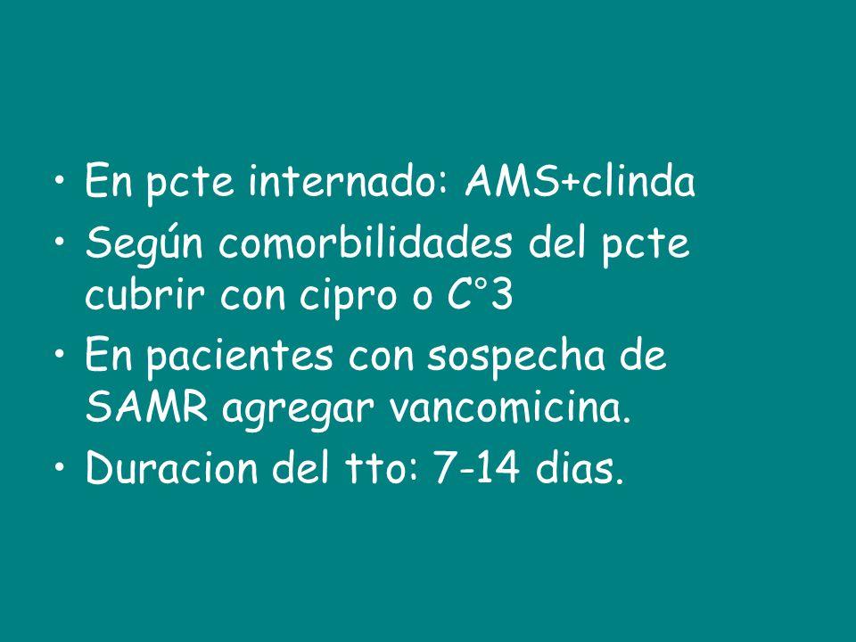 En pcte internado: AMS+clinda