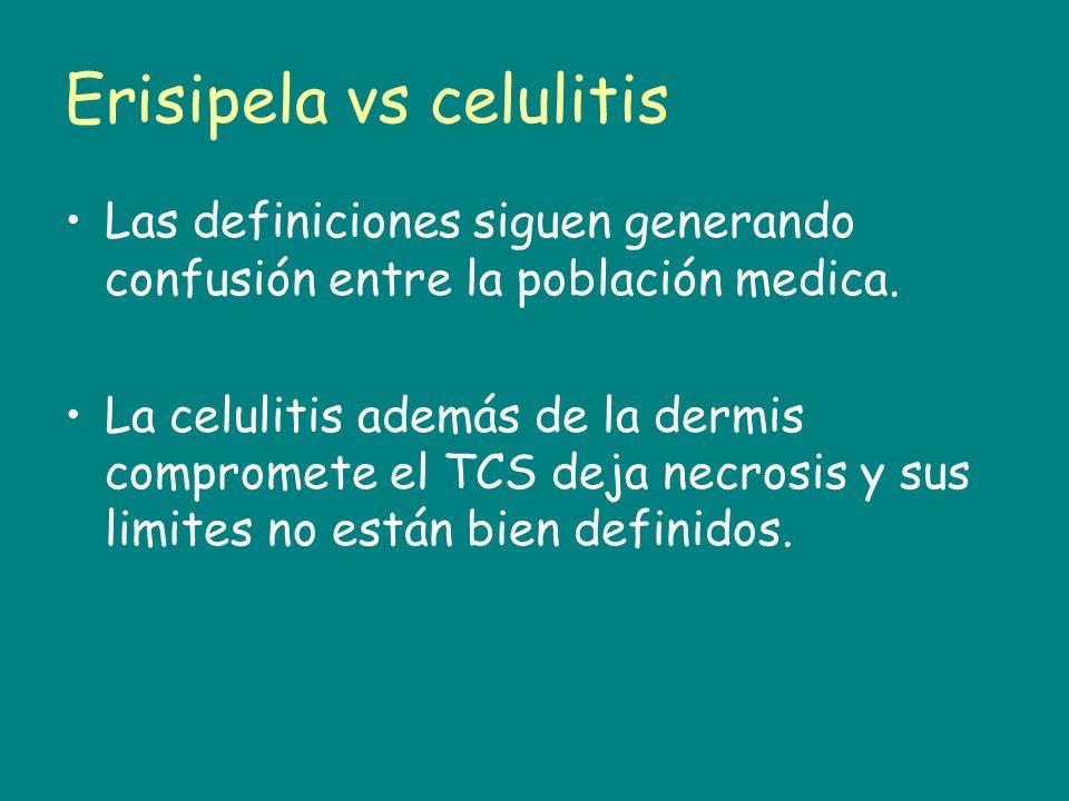 Erisipela vs celulitis