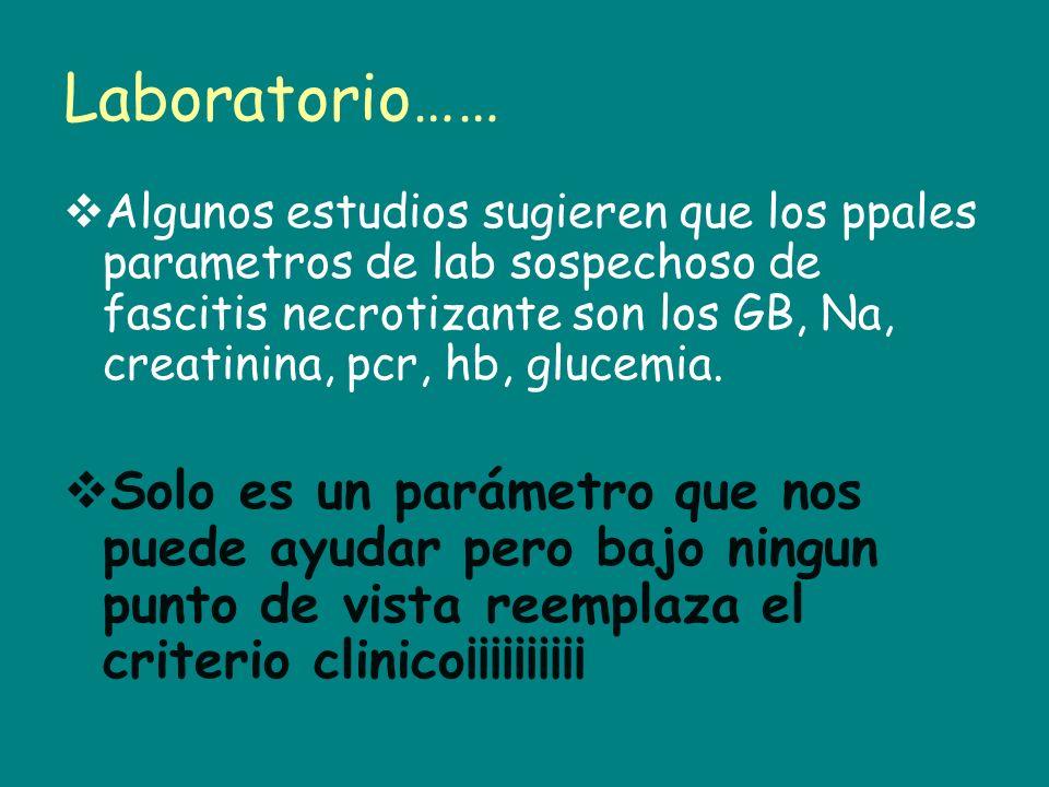 Laboratorio……