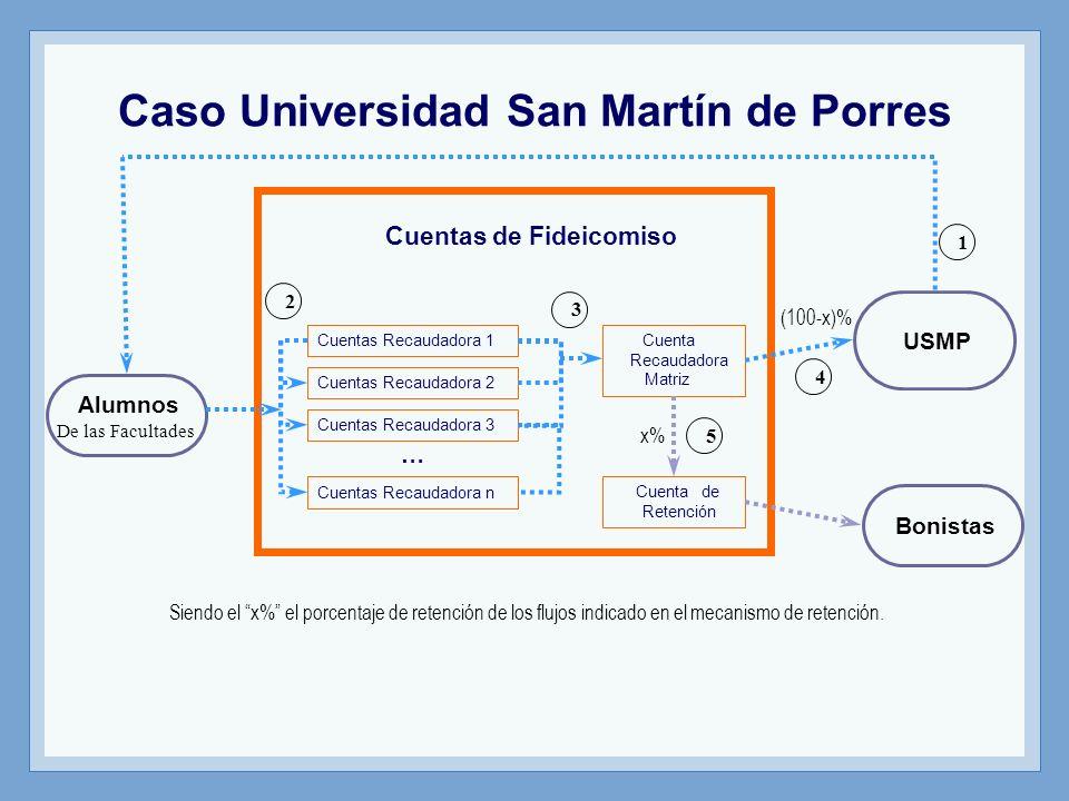 Caso Universidad San Martín de Porres
