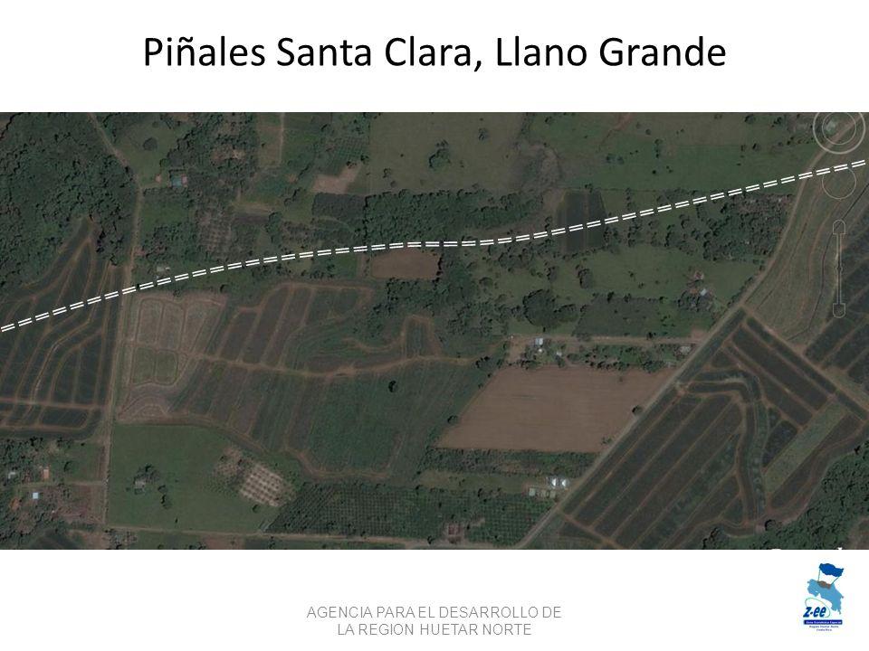Piñales Santa Clara, Llano Grande