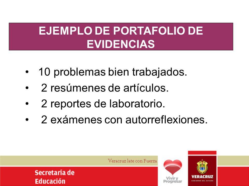 EJEMPLO DE PORTAFOLIO DE EVIDENCIAS