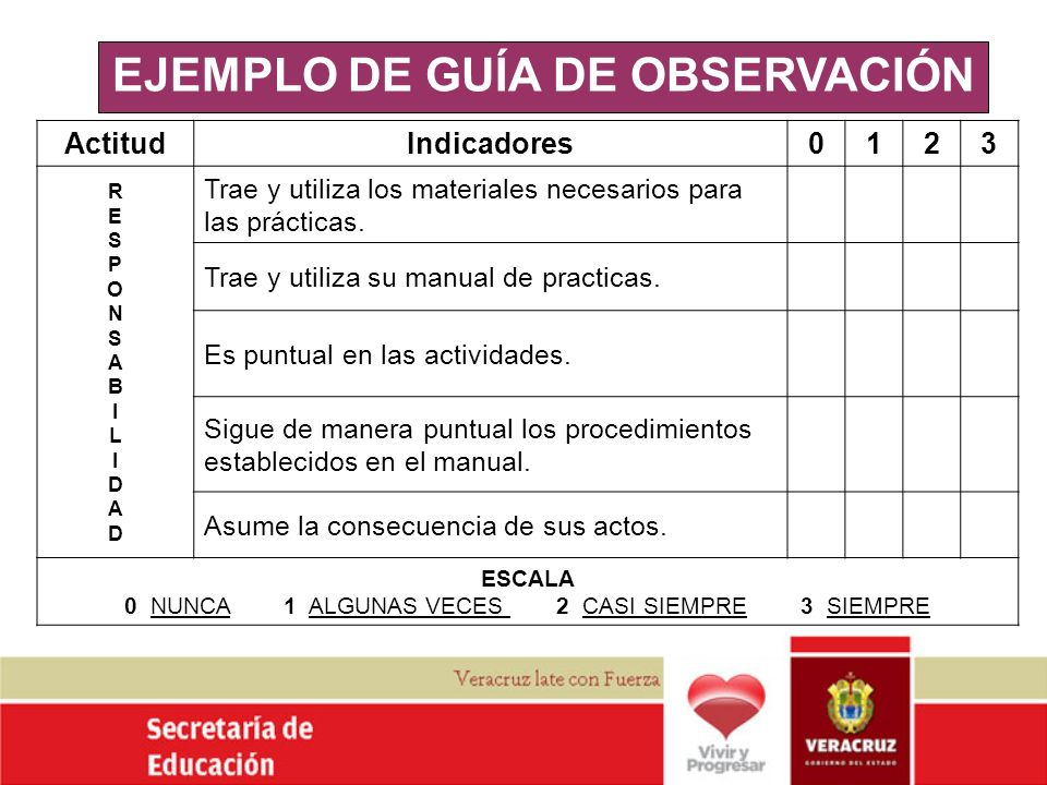 EJEMPLO DE GUÍA DE OBSERVACIÓN
