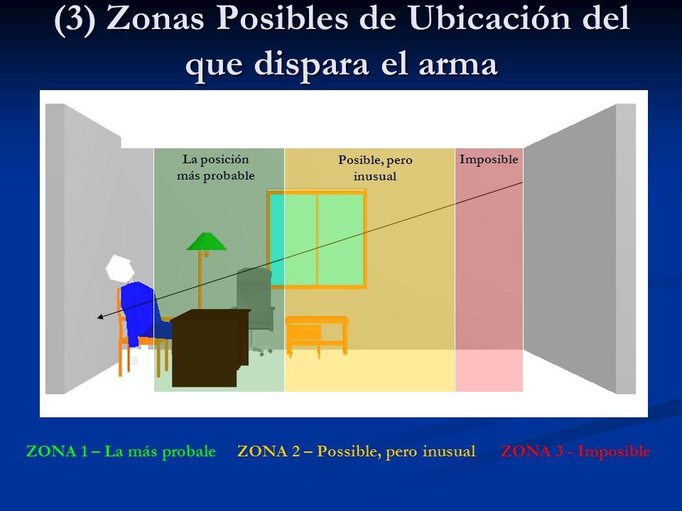 (3) Zonas Posibles de Ubicación del que dispara el arma