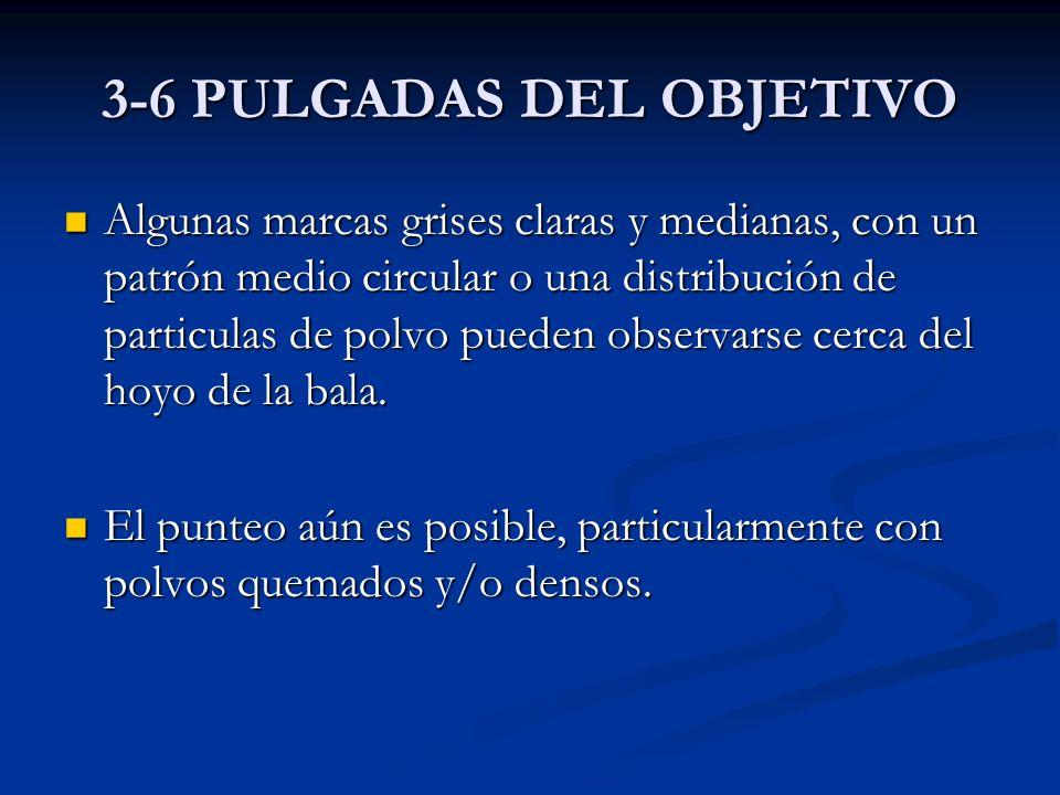 3-6 PULGADAS DEL OBJETIVO