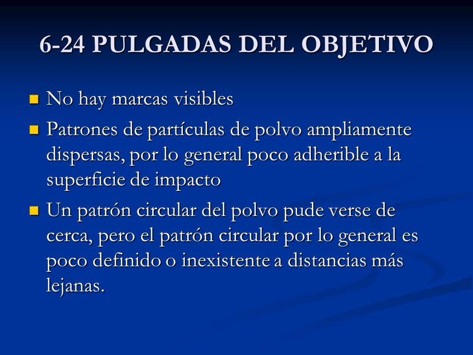 6-24 PULGADAS DEL OBJETIVO