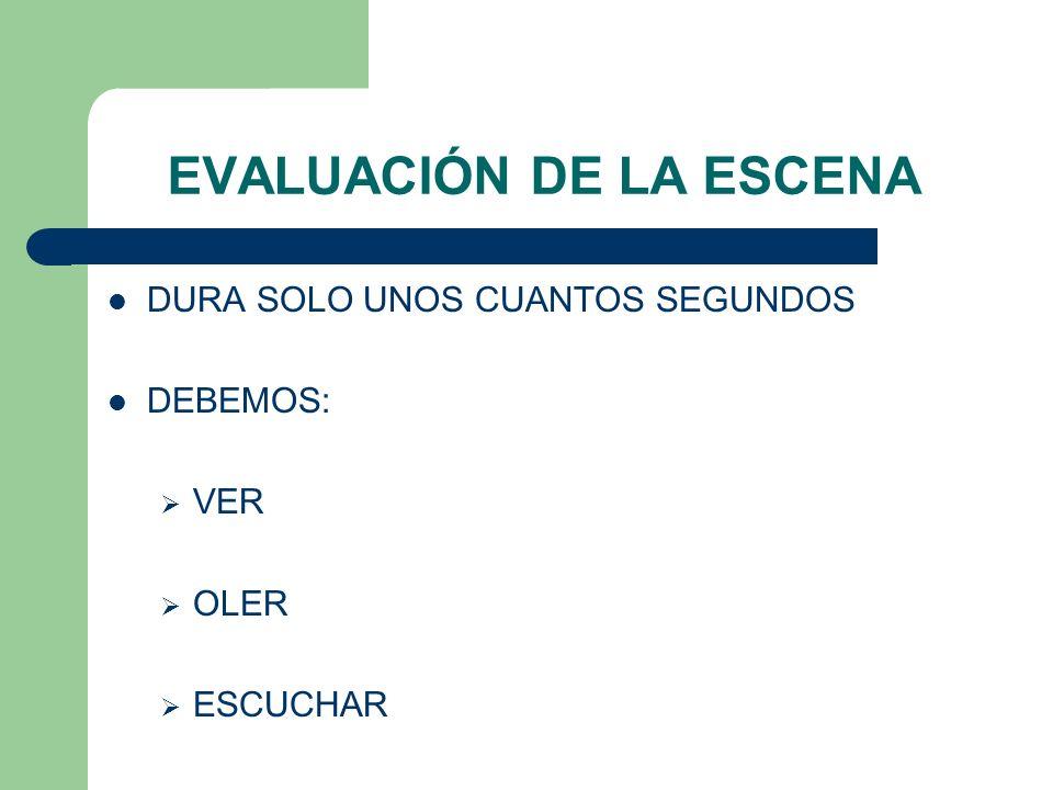 EVALUACIÓN DE LA ESCENA