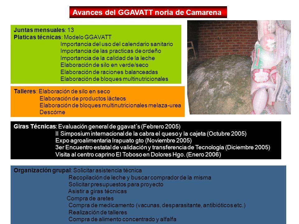 Avances del GGAVATT noria de Camarena
