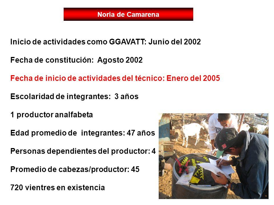 Noria de Camarena Inicio de actividades como GGAVATT: Junio del 2002