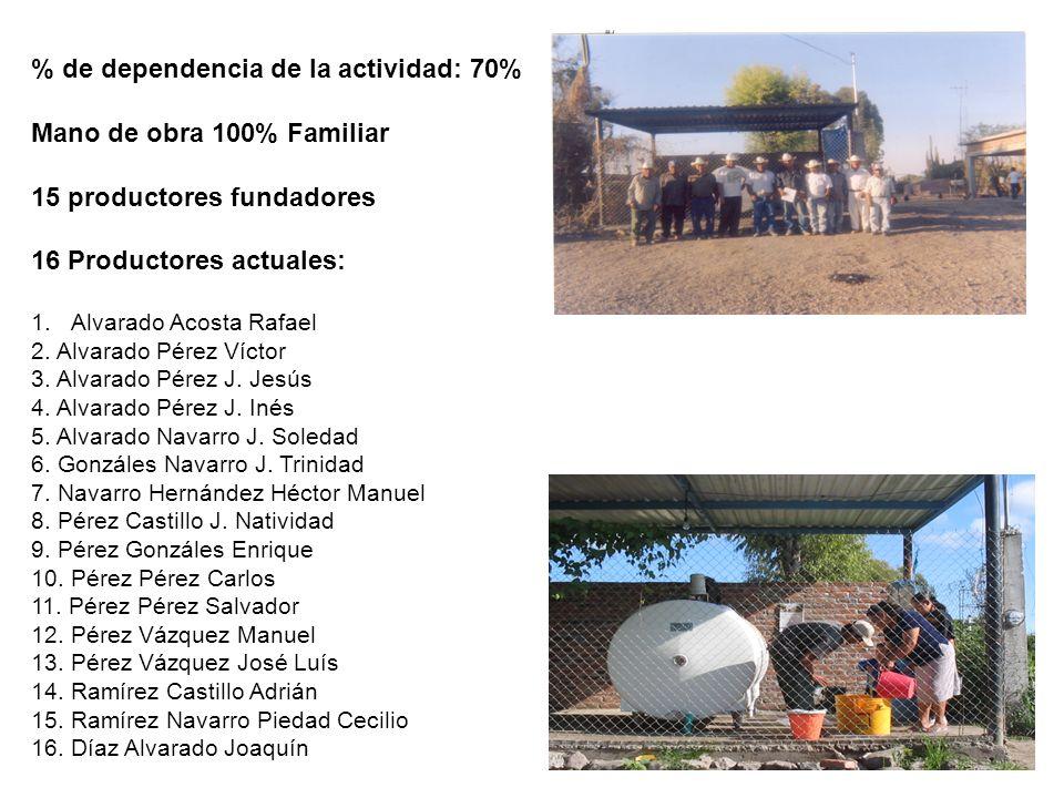 % de dependencia de la actividad: 70% Mano de obra 100% Familiar