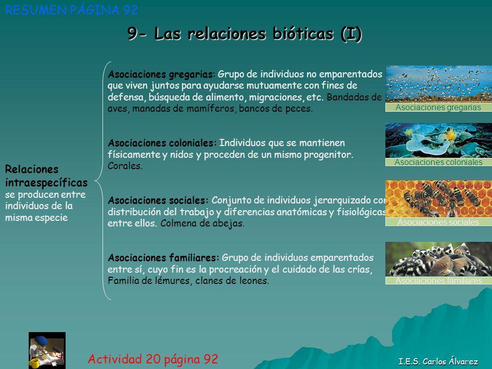 9- Las relaciones bióticas (I)