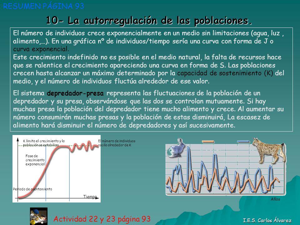 10- La autorregulación de las poblaciones.