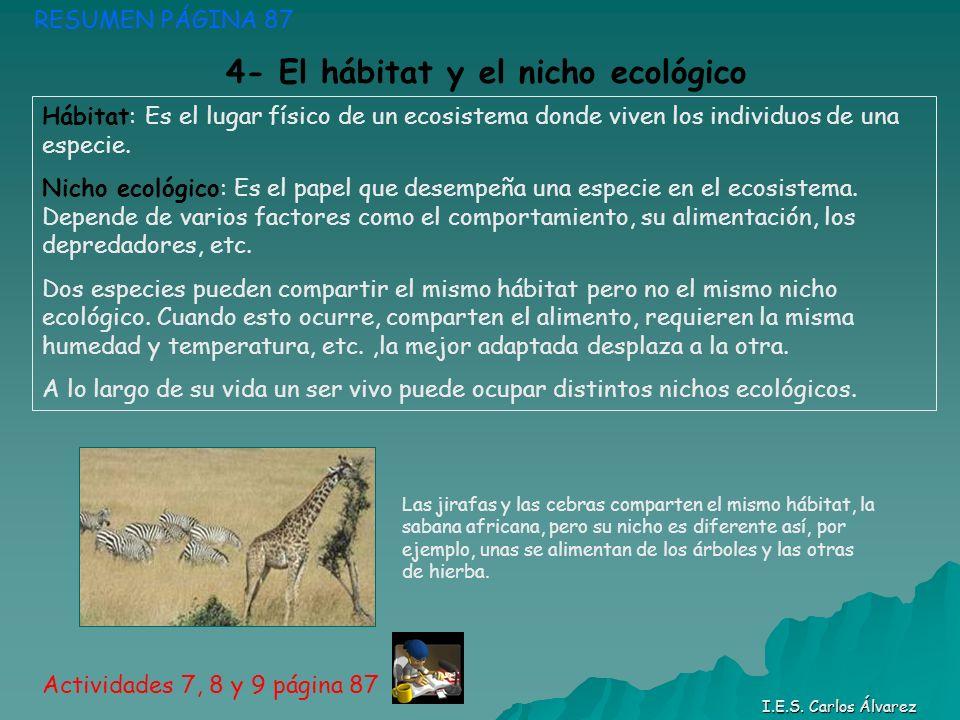 4- El hábitat y el nicho ecológico