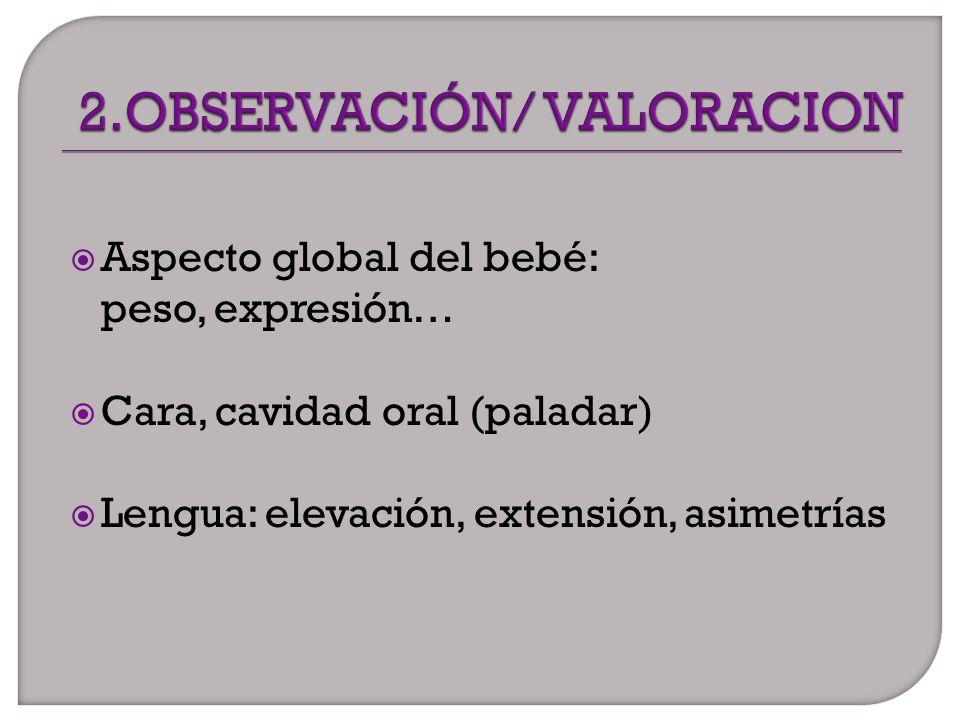 2.OBSERVACIÓN/ VALORACION