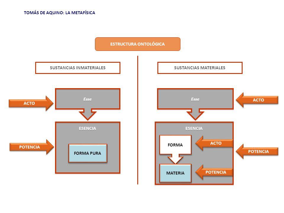 ESTRUCTURA ONTOLÓGICA SUSTANCIAS INMATERIALES SUSTANCIAS MATERIALES