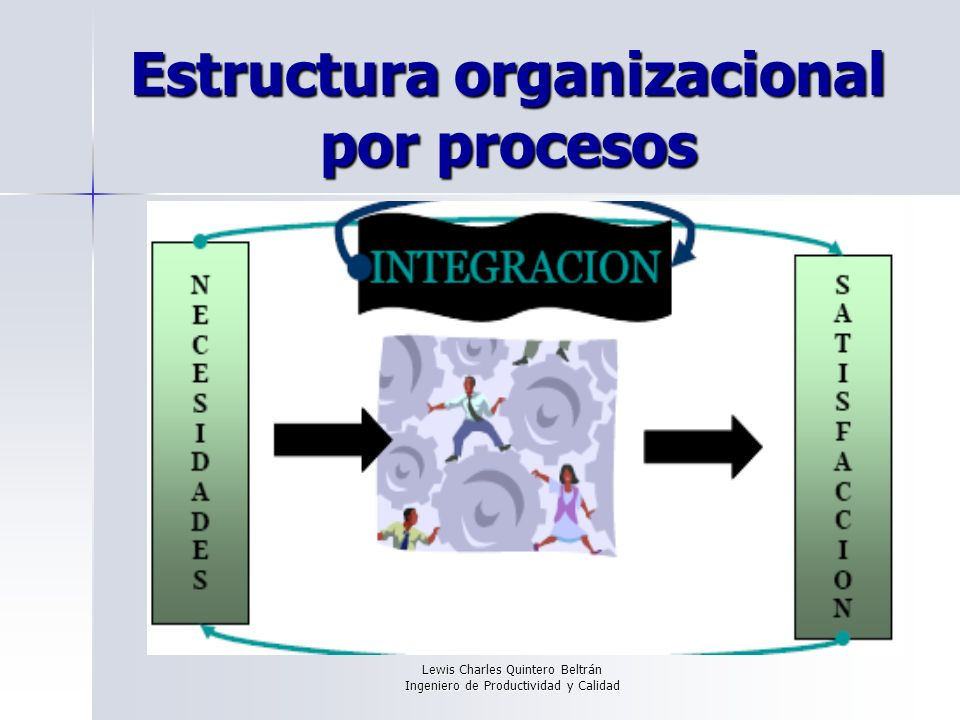 Estructura organizacional por procesos