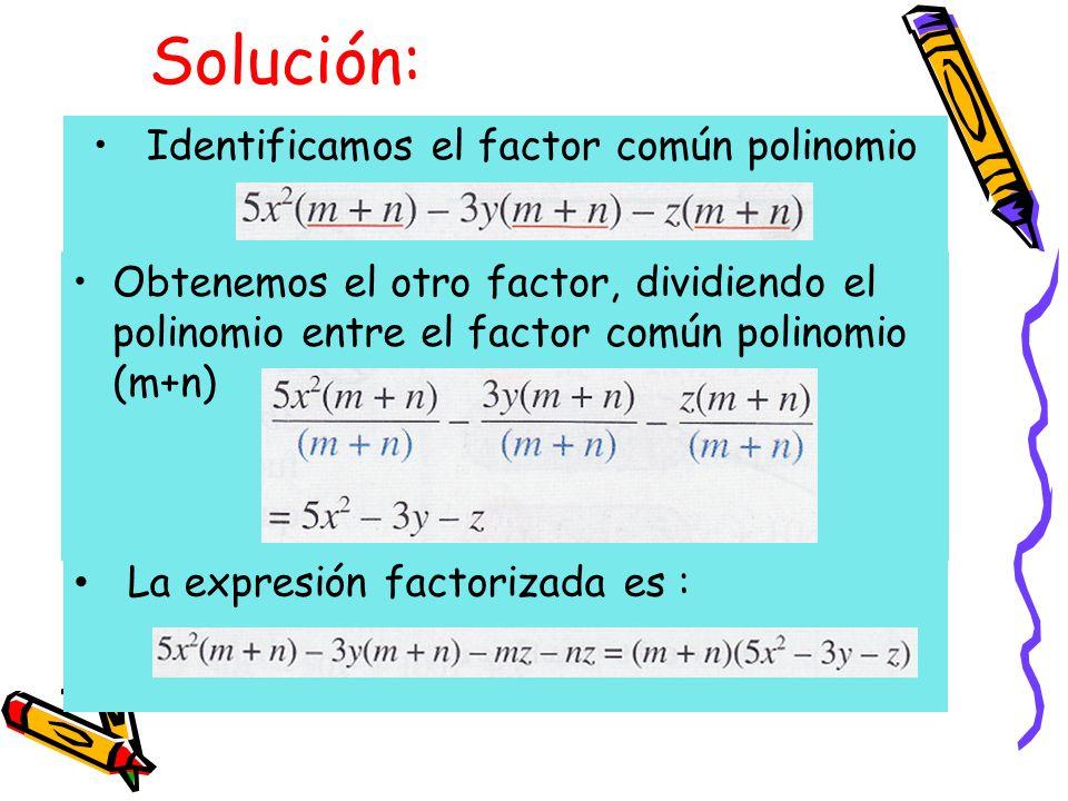 Identificamos el factor común polinomio