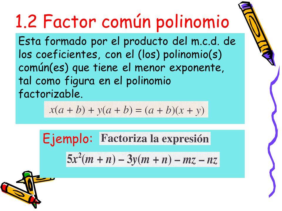 1.2 Factor común polinomio