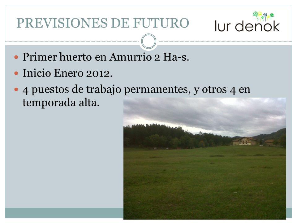 PREVISIONES DE FUTURO Primer huerto en Amurrio 2 Ha-s.