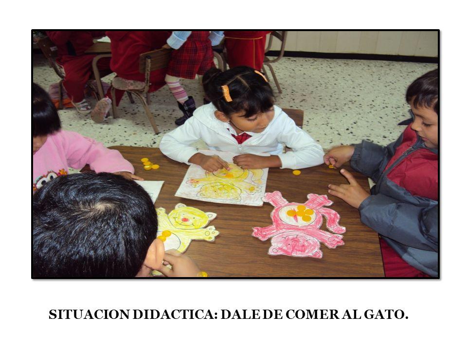 SITUACION DIDACTICA: DALE DE COMER AL GATO.
