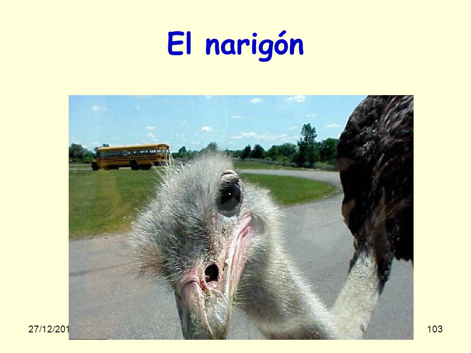 El narigón Mais non, tu n'es pas visé(e) 23/03/2017 gilalme@gmail.com