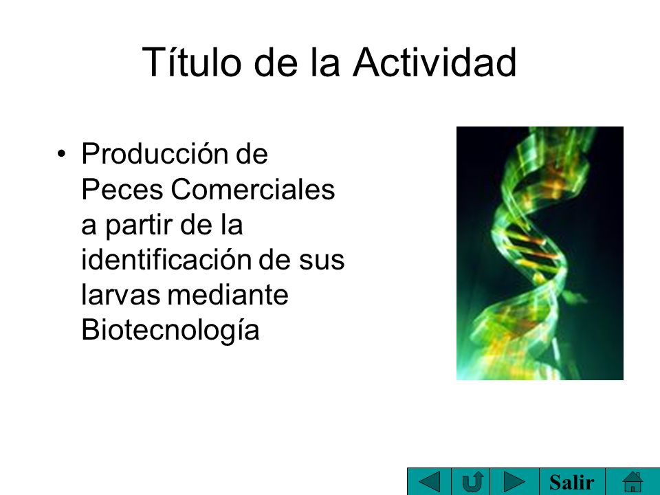 Título de la Actividad Producción de Peces Comerciales a partir de la identificación de sus larvas mediante Biotecnología.