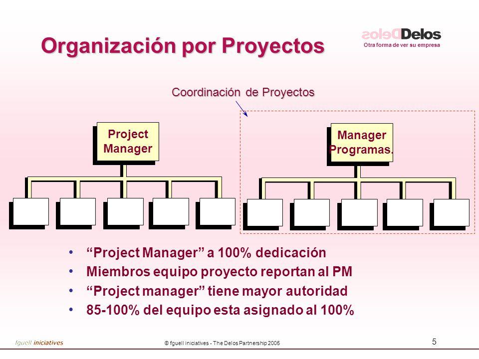 Organización por Proyectos