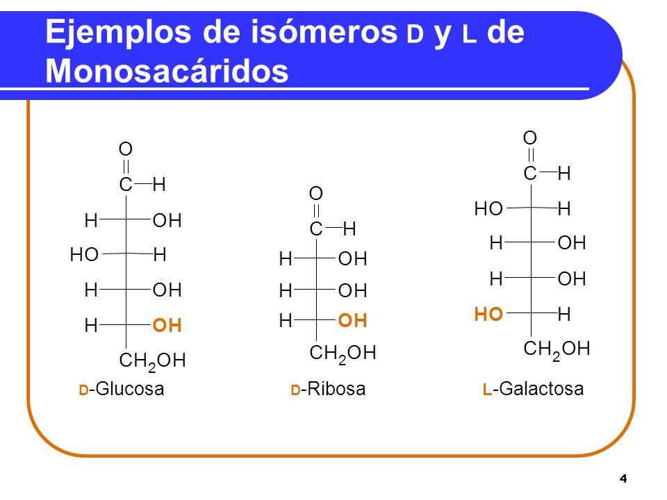 Ejemplos de isómeros D y L de Monosacáridos