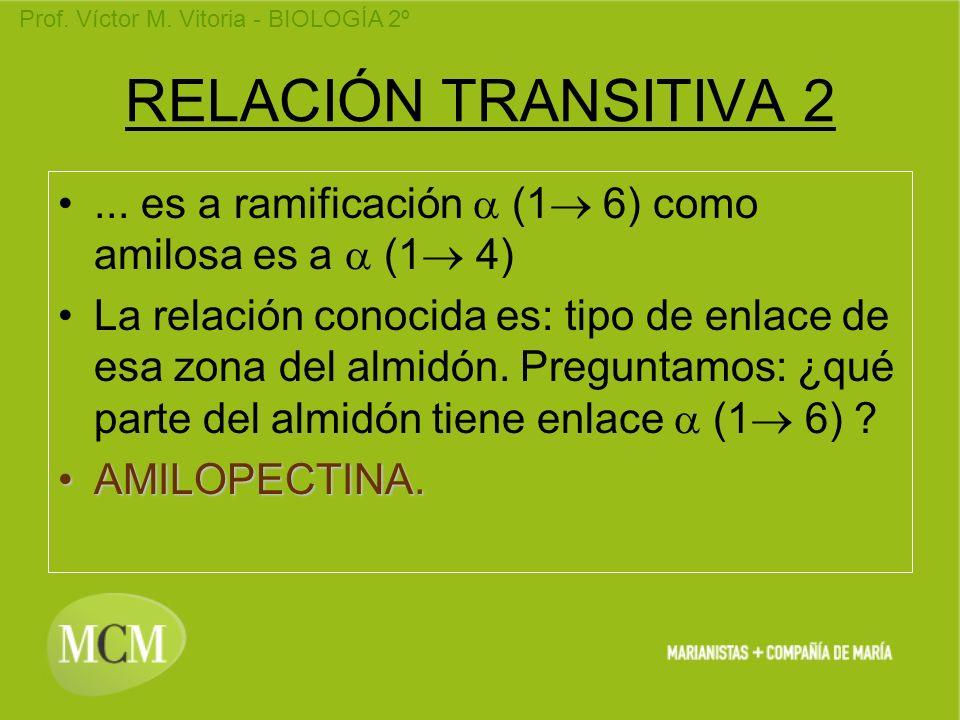 RELACIÓN TRANSITIVA 2... es a ramificación a (1 6) como amilosa es a a (1 4)
