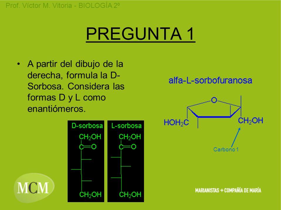 PREGUNTA 1 A partir del dibujo de la derecha, formula la D-Sorbosa. Considera las formas D y L como enantiómeros.