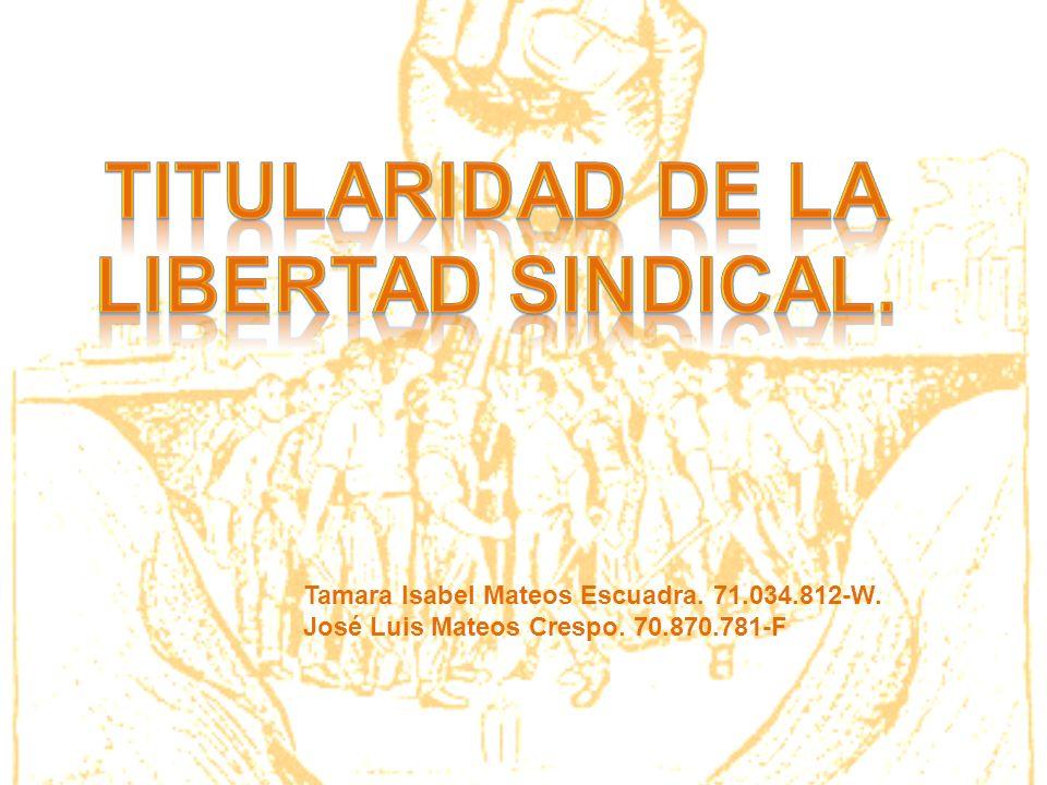 TITULARIDAD DE LA LIBERTAD SINDICAL.