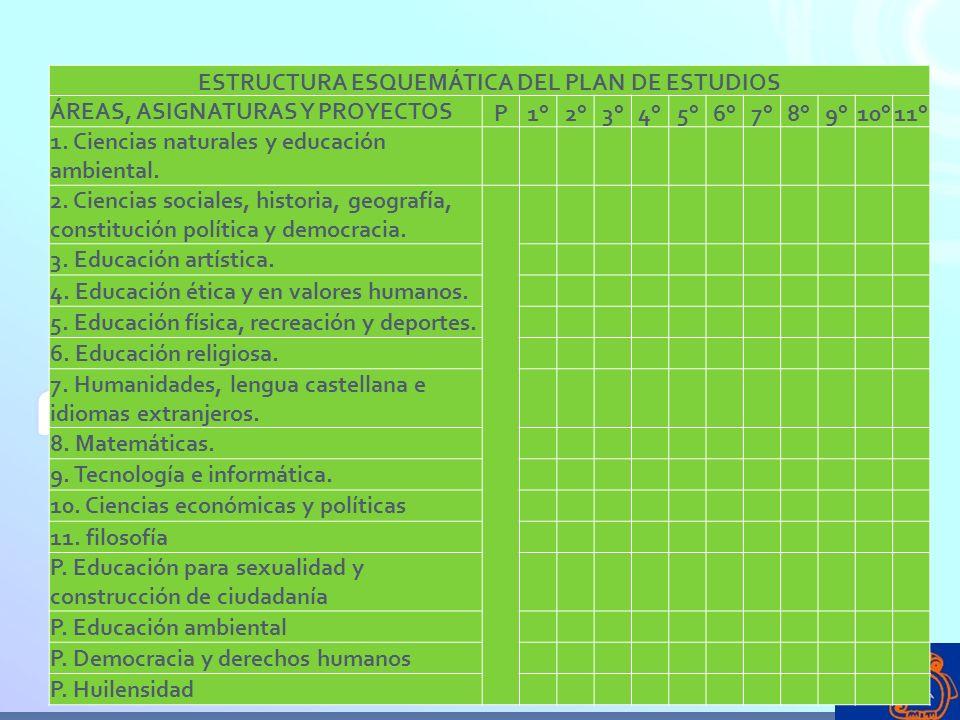 ESTRUCTURA ESQUEMÁTICA DEL PLAN DE ESTUDIOS