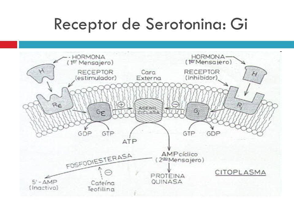 Receptor de Serotonina: Gi
