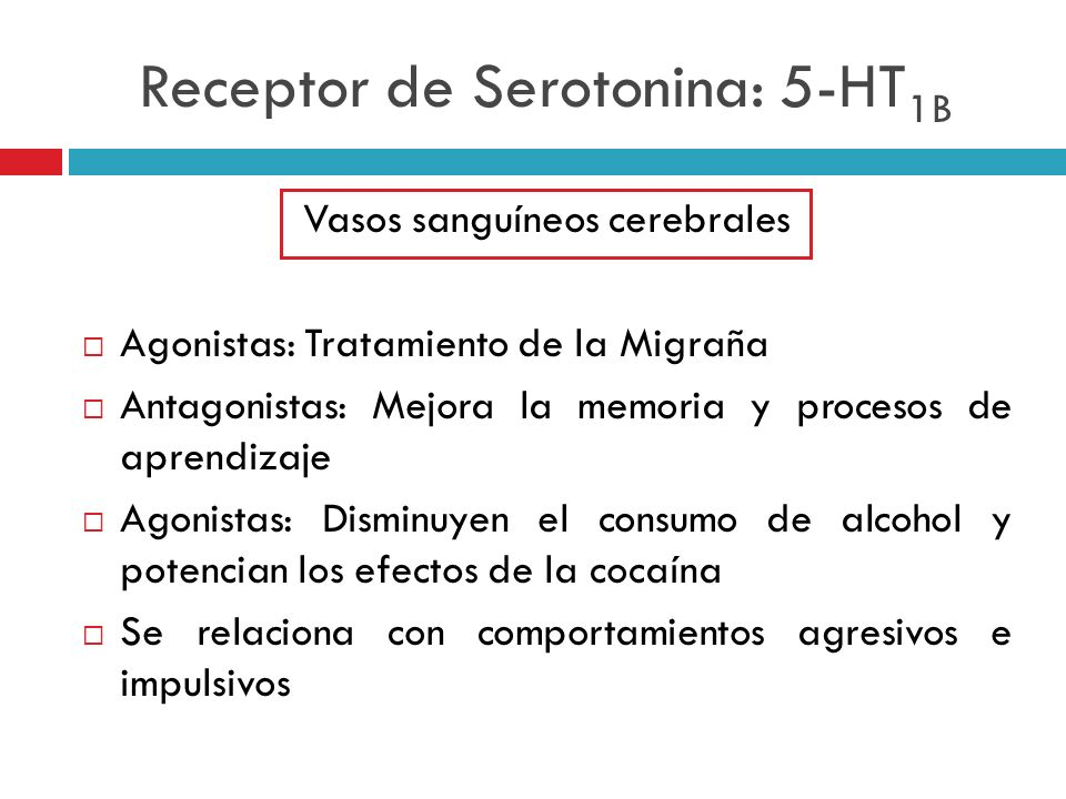 Receptor de Serotonina: 5-HT1B