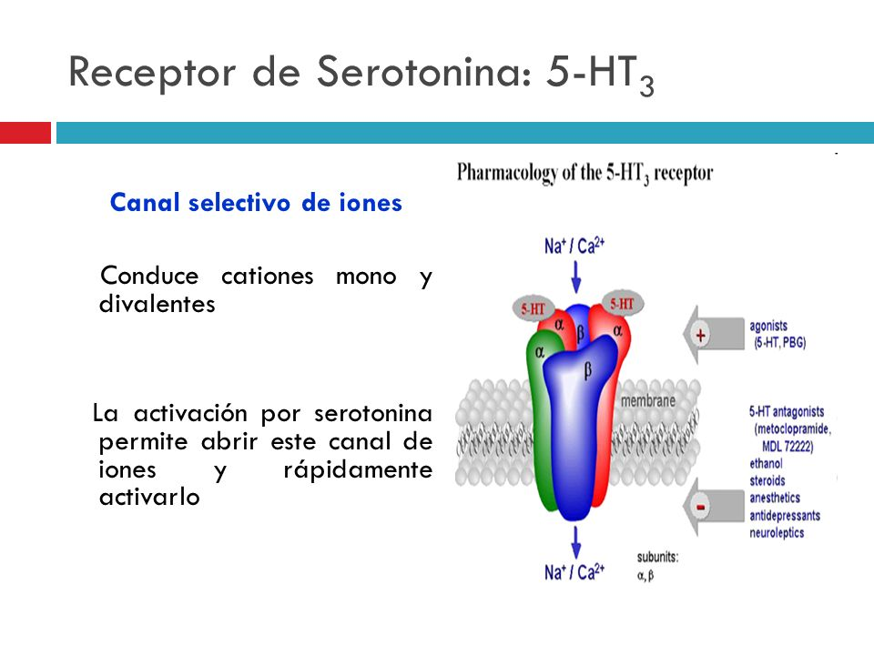 Receptor de Serotonina: 5-HT3