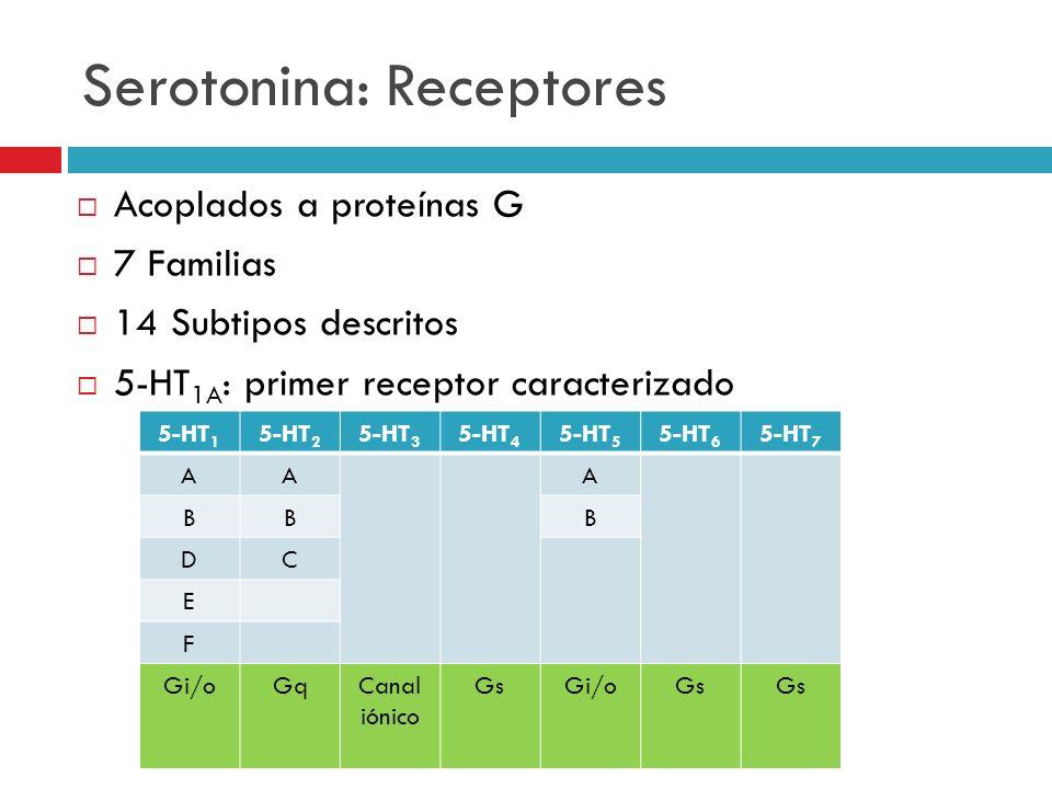 Serotonina: Receptores