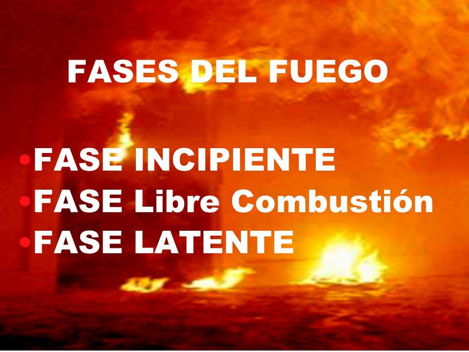 FASE INCIPIENTE FASE Libre Combustión FASE LATENTE