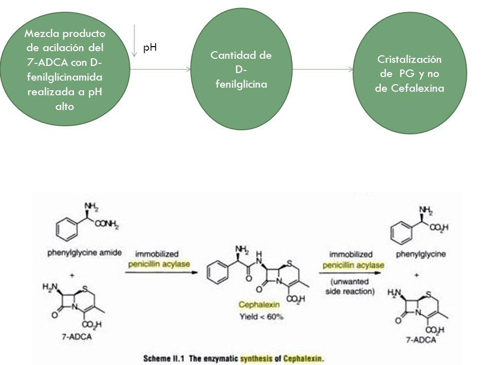 Cantidad de D-fenilglicina