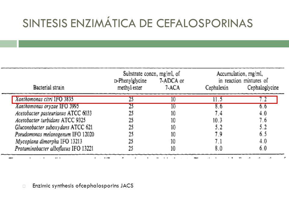 SINTESIS ENZIMÁTICA DE CEFALOSPORINAS