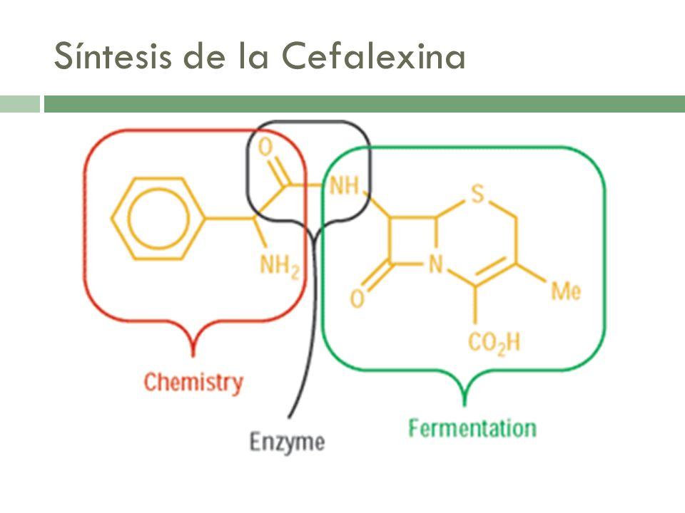 Síntesis de la Cefalexina