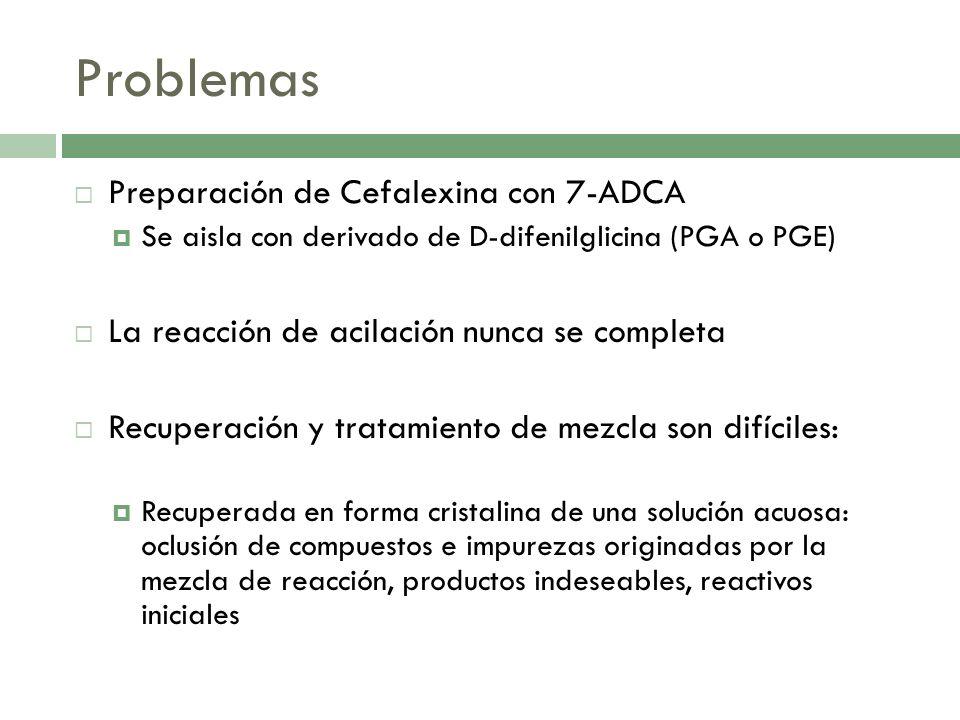 Problemas Preparación de Cefalexina con 7-ADCA