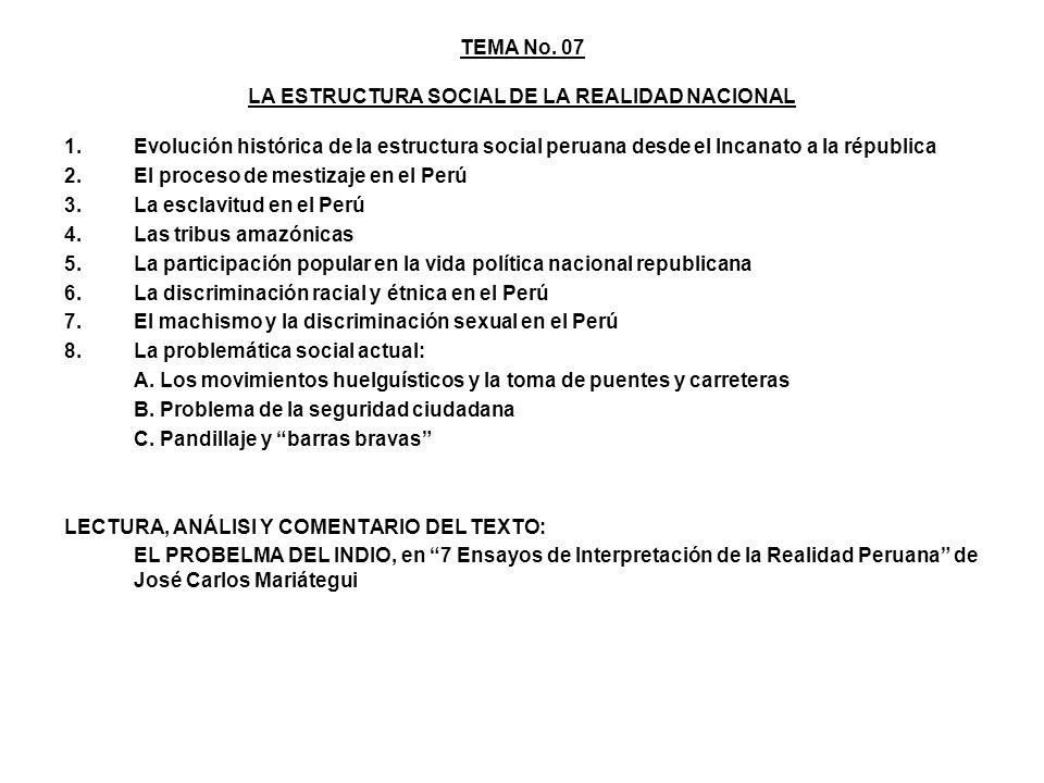TEMA No. 07 LA ESTRUCTURA SOCIAL DE LA REALIDAD NACIONAL