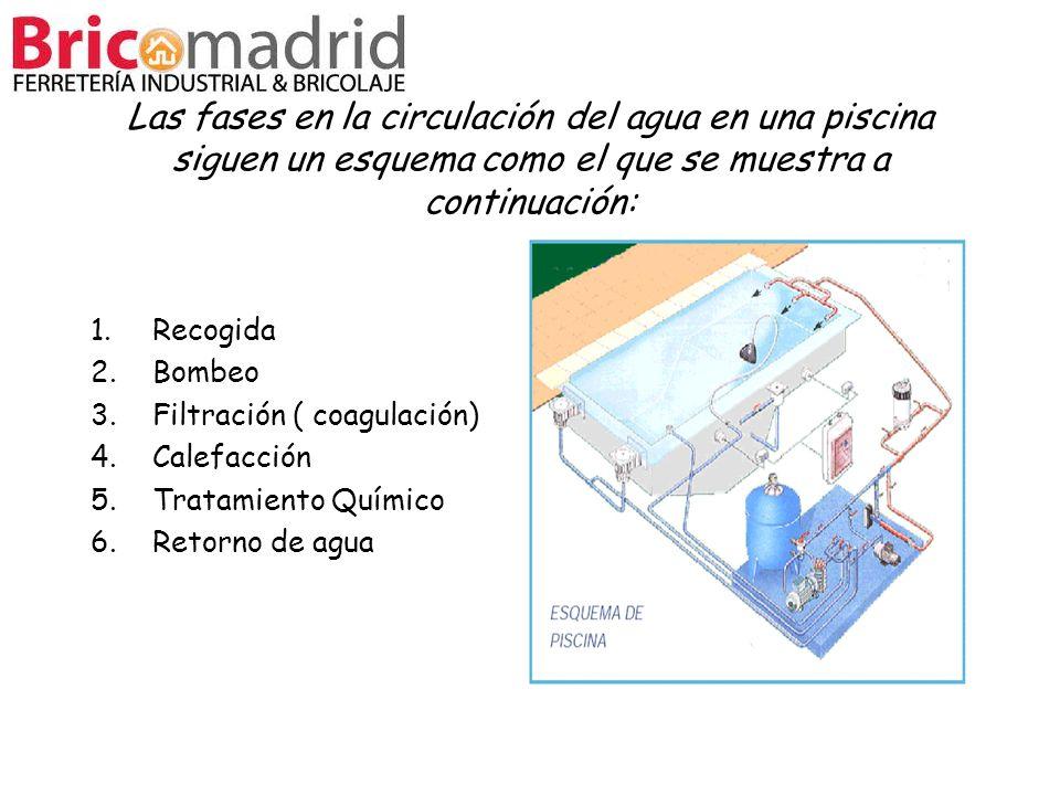 Las fases en la circulación del agua en una piscina siguen un esquema como el que se muestra a continuación: