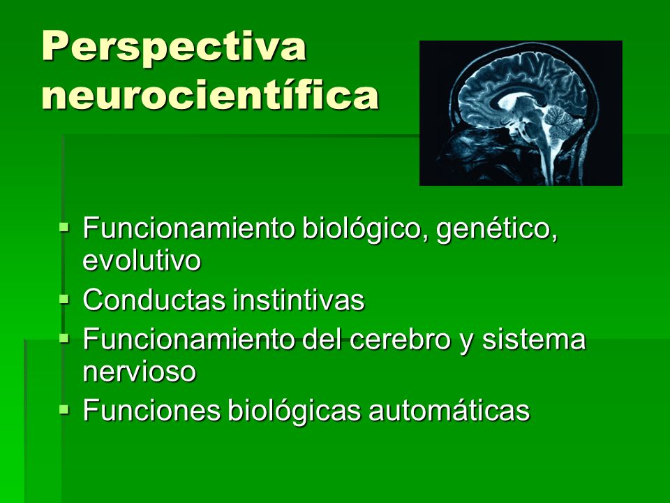 Perspectiva neurocientífica