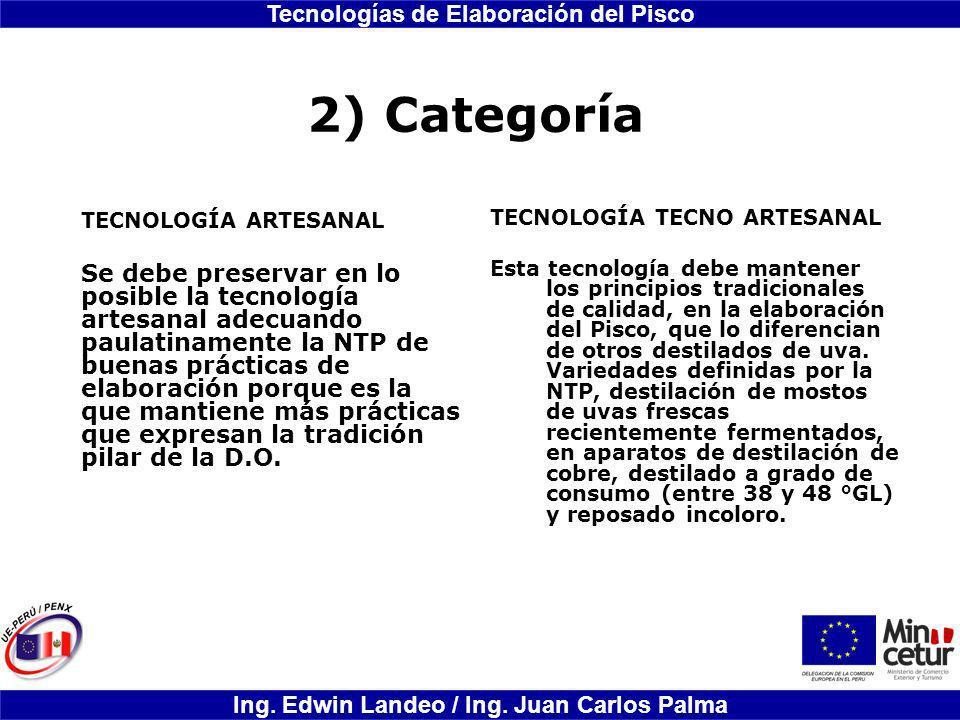 2) Categoría TECNOLOGÍA ARTESANAL.